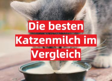 Die besten Katzenmilch im Vergleich