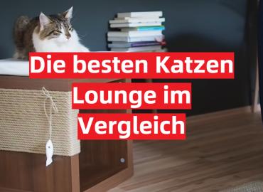 Die besten Katzen Lounge im Vergleich