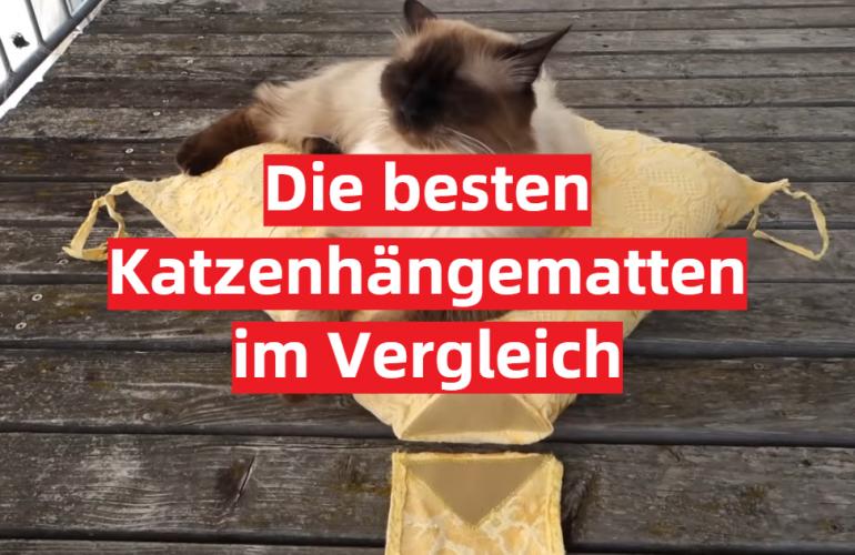 Katzenhängematte Test 2021: Die besten 5 Katzenhängematten im Vergleich