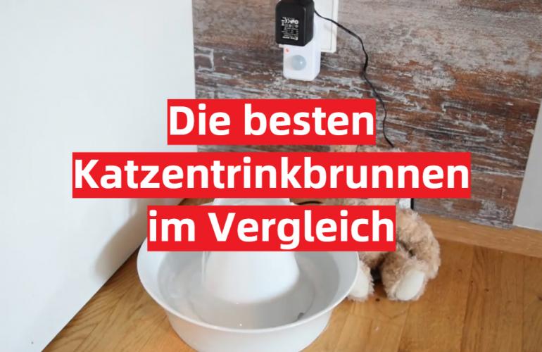 Katzentrinkbrunnen Test 2021: Die besten 5 Katzentrinkbrunnen im Vergleich